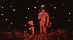 Могила Светлячков / Grave of the Fireflies / Hotaru no haka (1988/RUS/JAP) [HWP] DVDRip